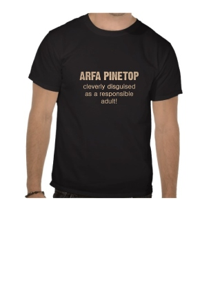 tee shirt responsible adult