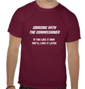 tee shirt - purple - if you like it now