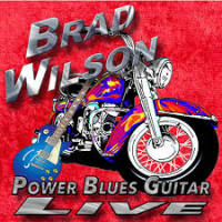Brad Wilson (Power Blues Guitar Live