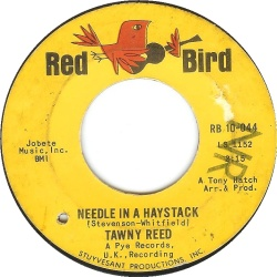 Needle in a Haystack - Tawney Reed