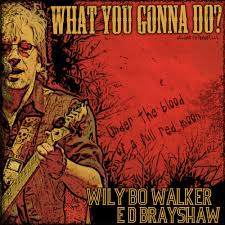 What You Gonna Do - Wily Bo Walker